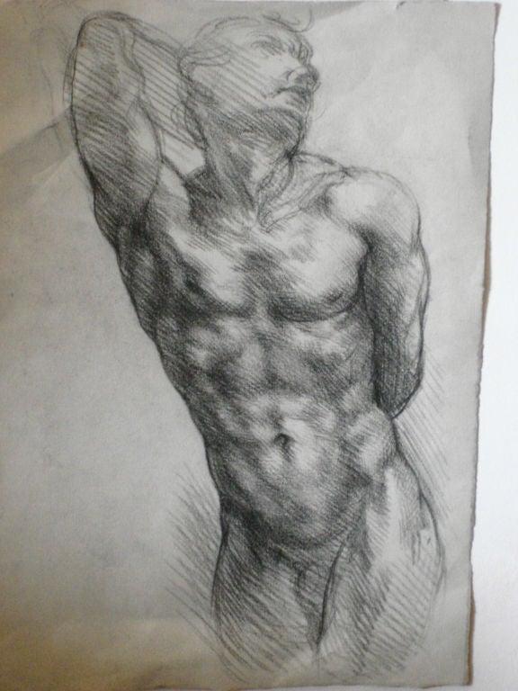 male drawings Nude
