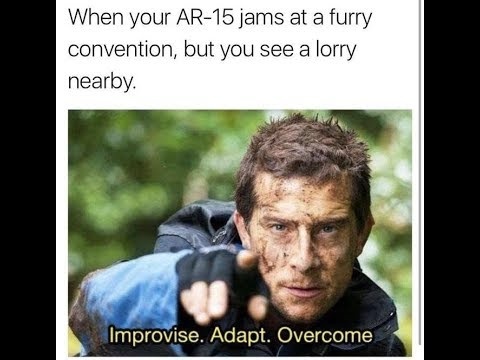 Bear grylls funny memes