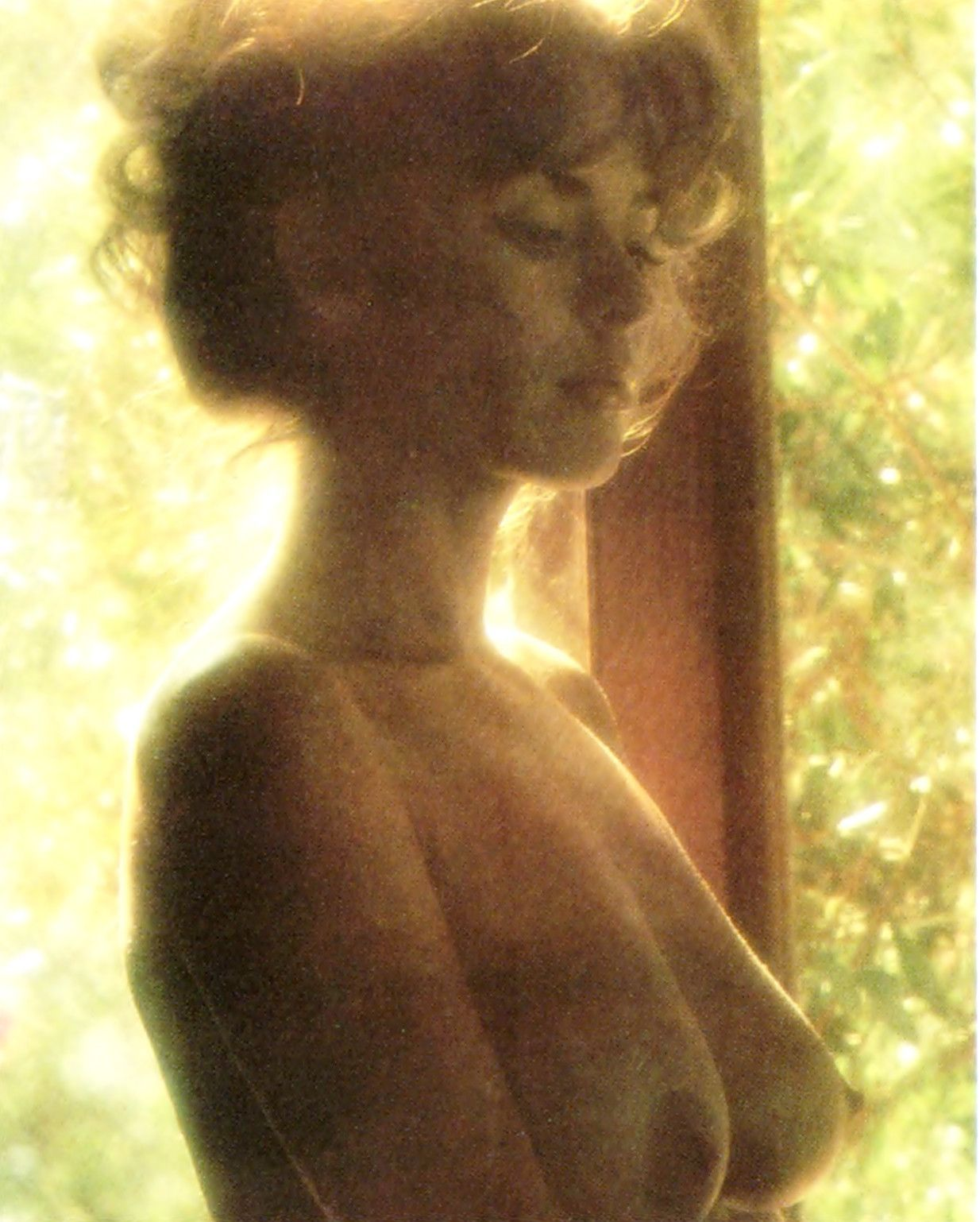Tina louise gilligan island nude