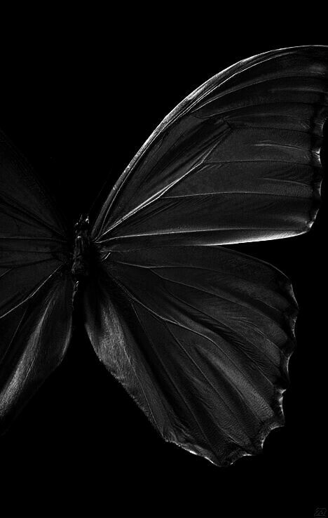 Black to white tumblr
